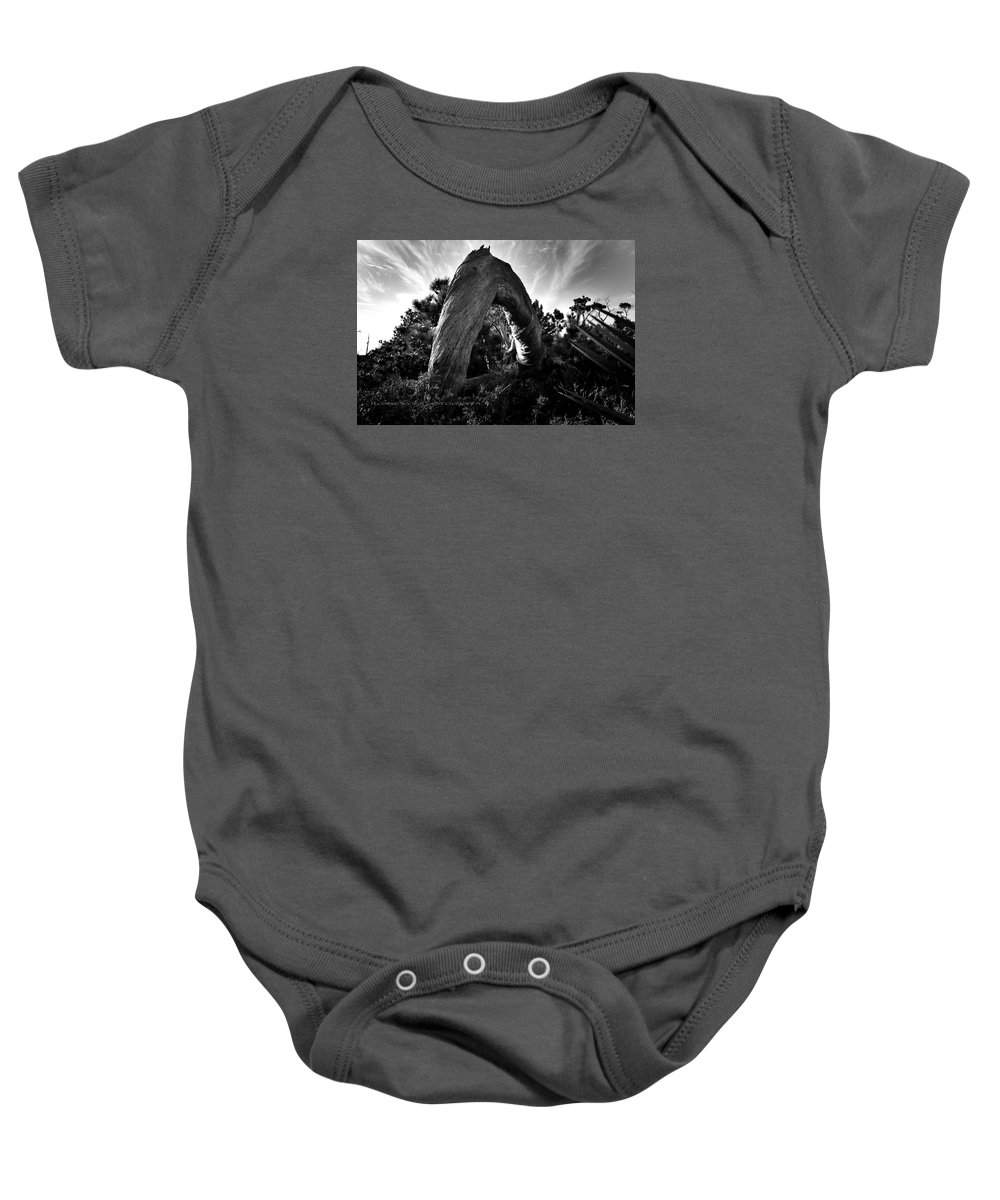 Beach Tree Sand Sky Woods Baby Onesie featuring the photograph Serpant Tree by Ronnie Wolf