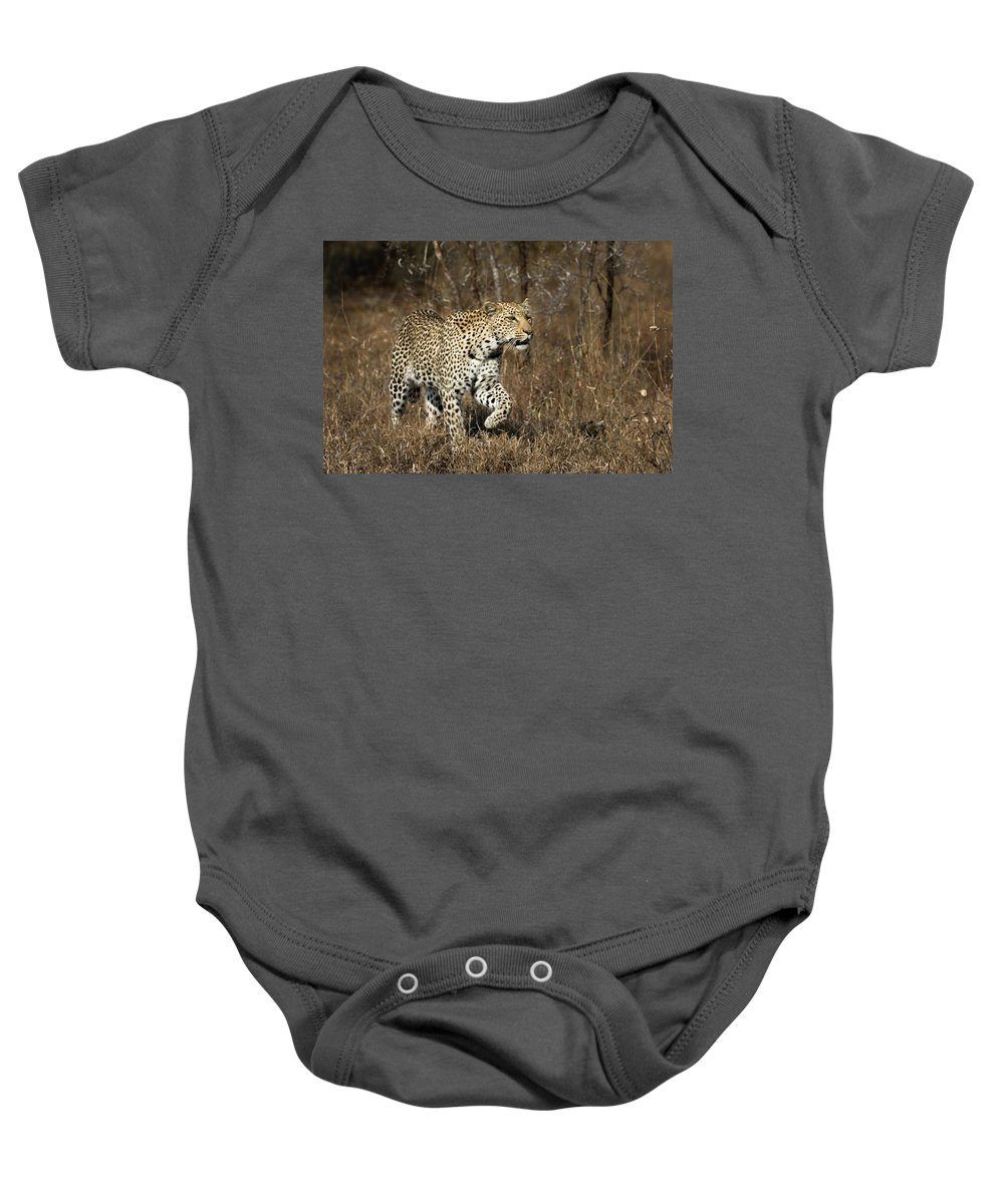 Leopard Baby Onesie featuring the photograph She Stalks by Mary Kathryn Riggins