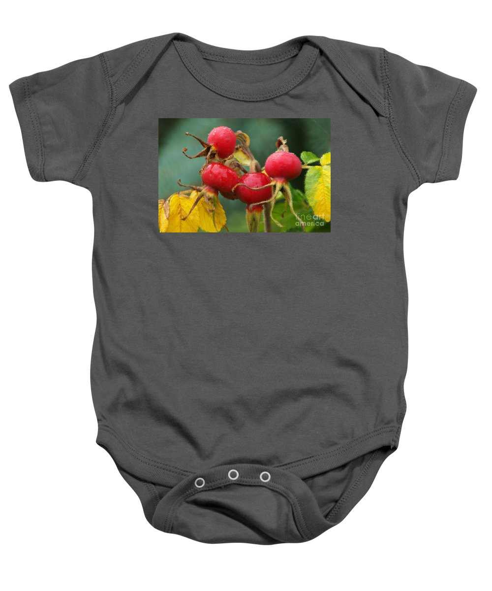 Fall Baby Onesie featuring the photograph Signs Of Fall 2 by Sharon Talson