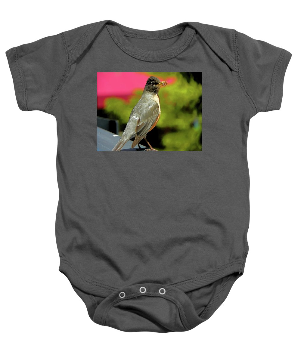 Abstract Baby Onesie featuring the photograph Silver Robin by Lenore Senior