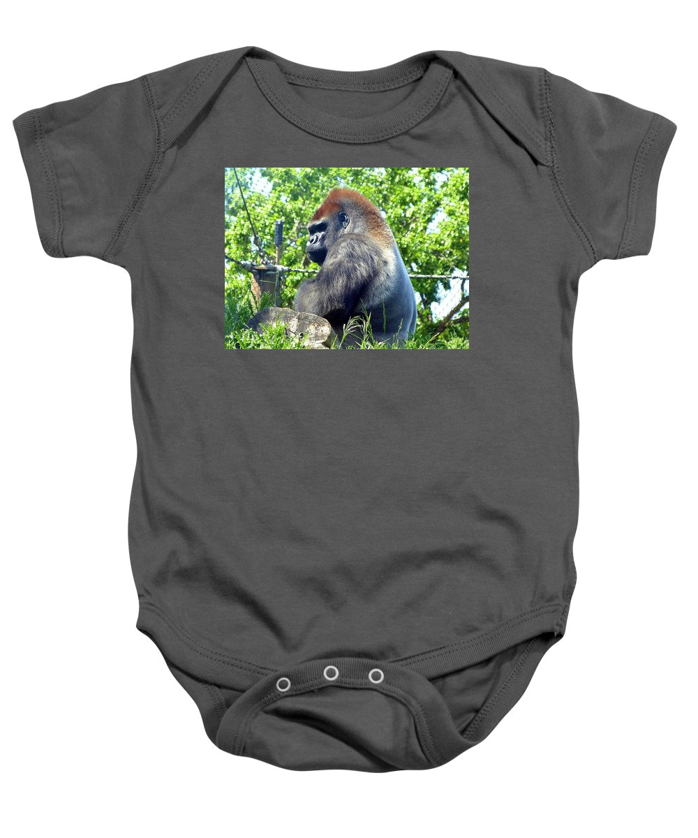 #silverbackgorilla Baby Onesie featuring the photograph Silverback Gorilla by Will Borden