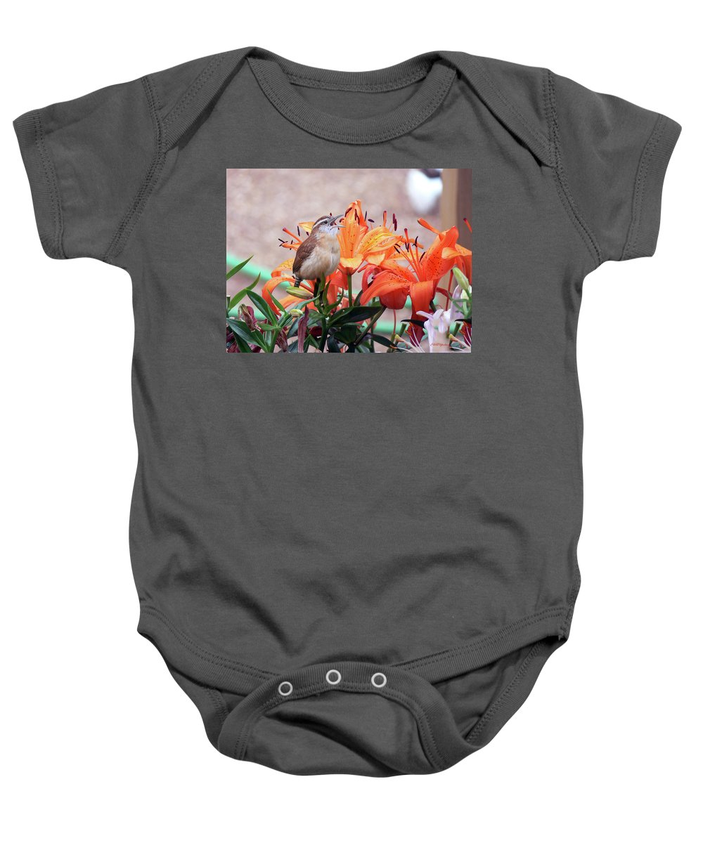 Wren Baby Onesie featuring the photograph Singing Wren In The Lilies by Ericamaxine Price
