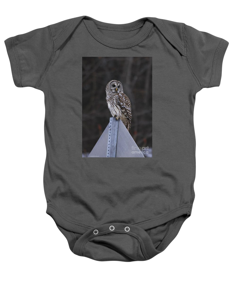 Bird Baby Onesie featuring the photograph Sitting On The Sign Post by Deborah Benoit