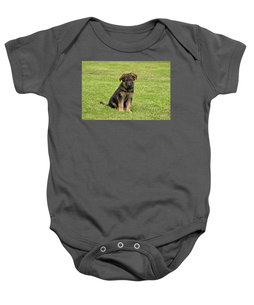 German Shepherd Baby Onesie featuring the photograph Sitting Pretty by Sandy Keeton