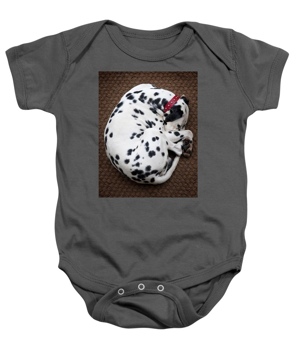 Dog Baby Onesie featuring the photograph Sleeping Dalmatian by Rafa Rivas