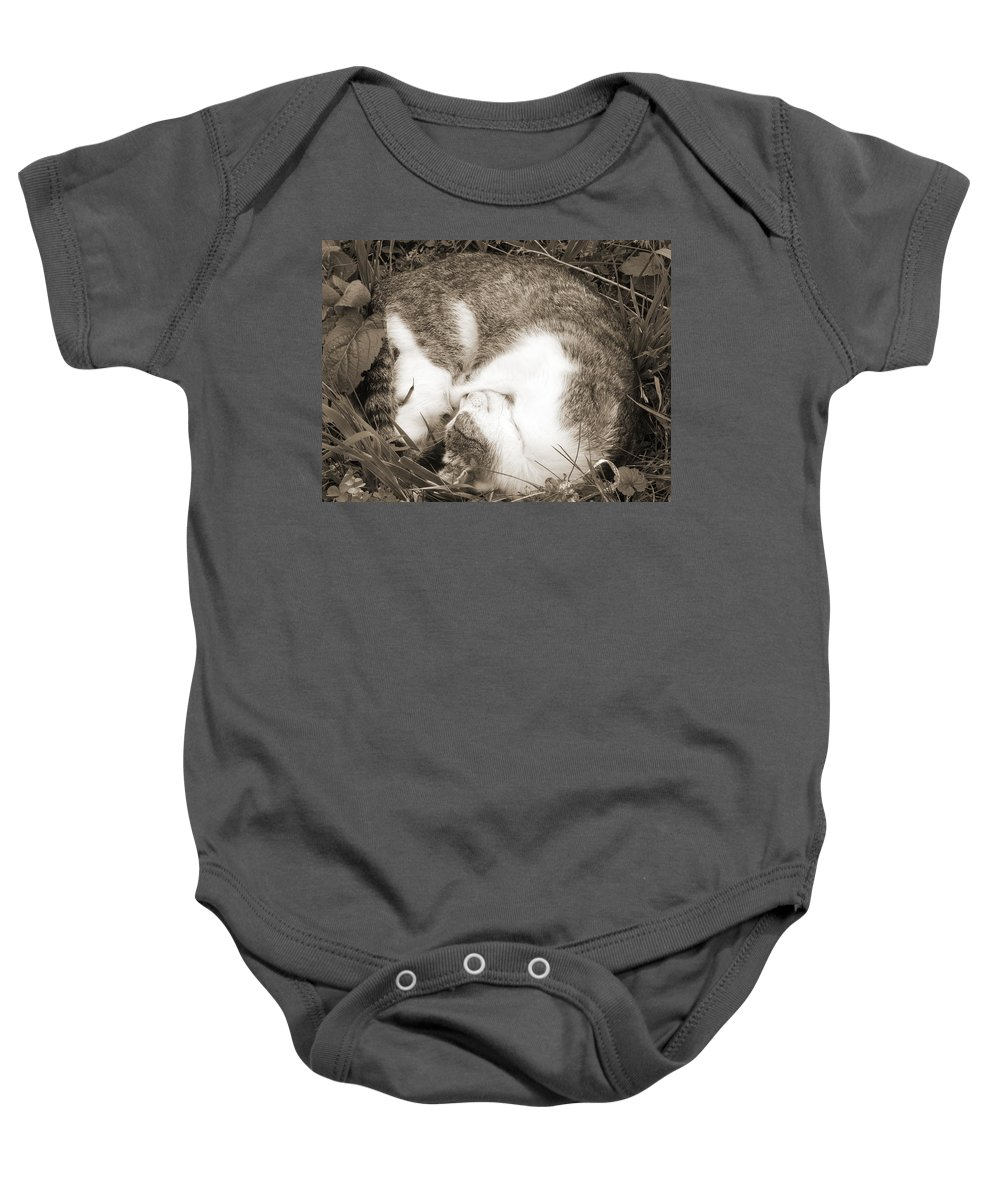 Pets Baby Onesie featuring the photograph Sleeping by Daniel Csoka