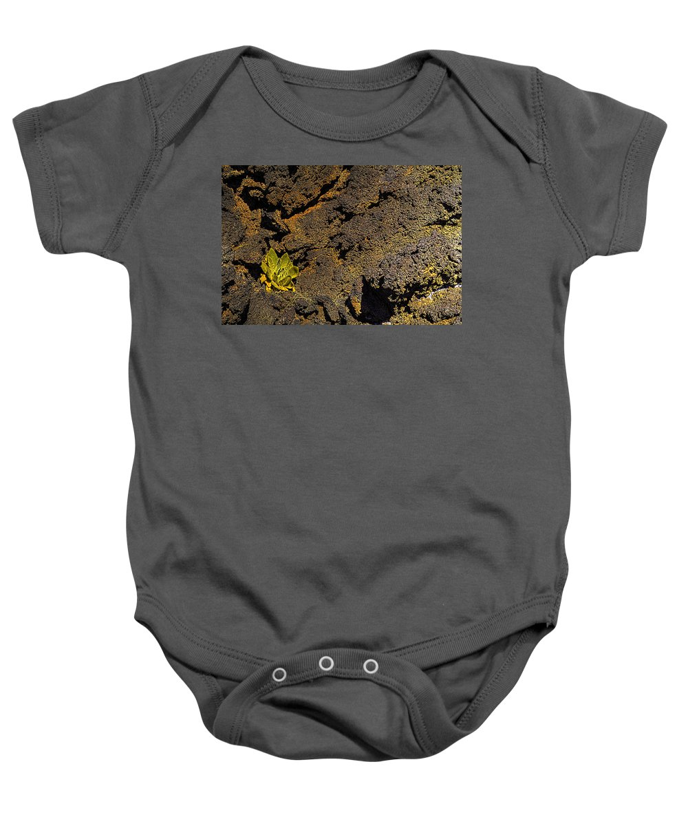 Pictorial Baby Onesie featuring the photograph Small Aloe In Lava Flow by Roger Passman