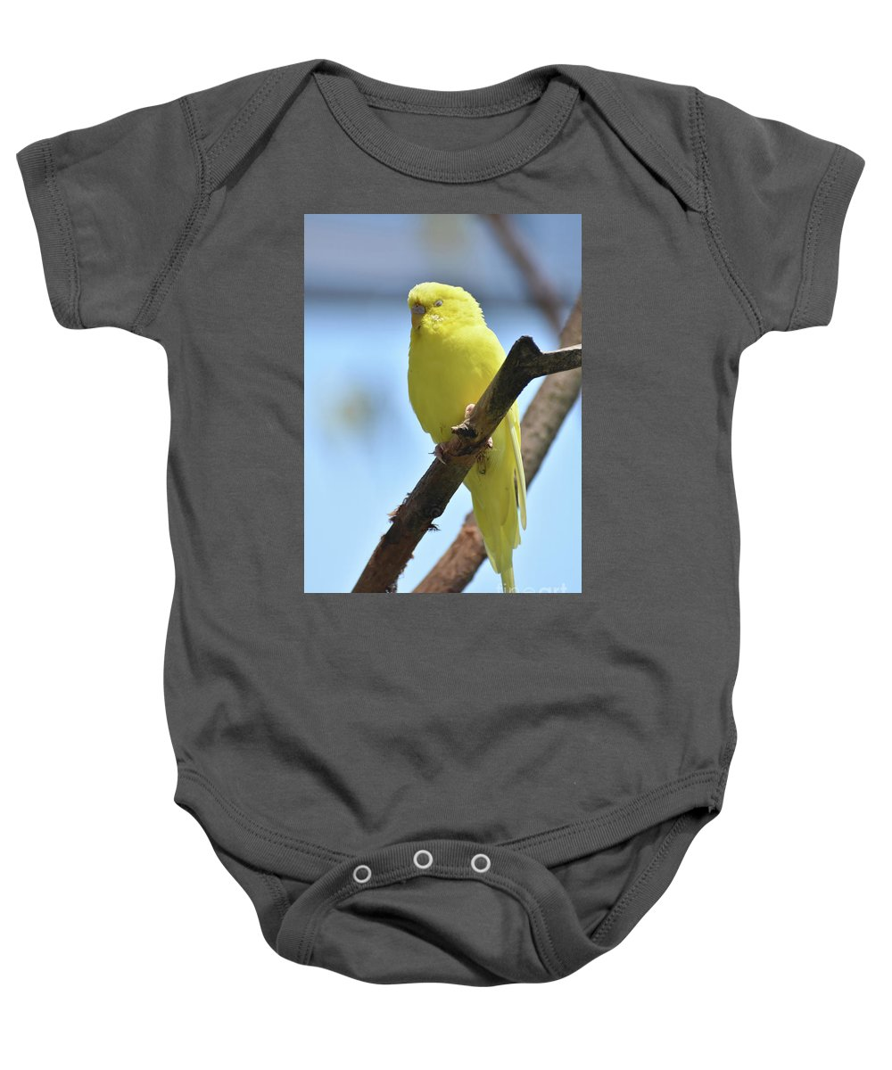 Budgie Baby Onesie featuring the photograph Small Yellow Budgie Parakeet In The Wild by DejaVu Designs