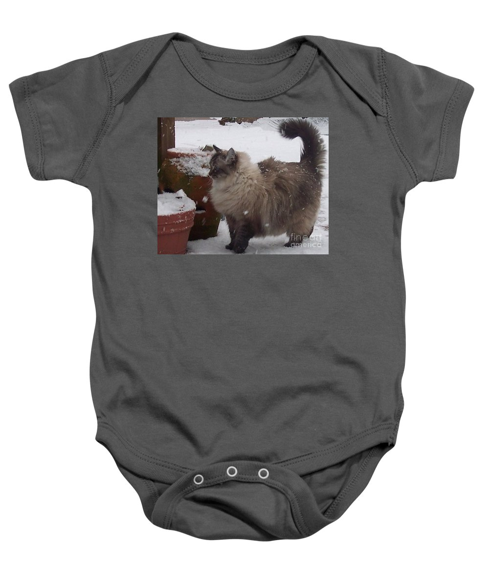 Cats Baby Onesie featuring the photograph Snow Kitty by Debbi Granruth