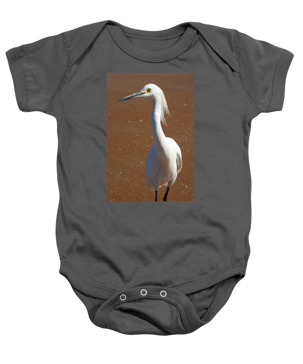 Bird Beach Sand White Bright Yellow Curious Egret Long Neck Feather Eye Ocean Baby Onesie featuring the photograph Snowy Egret by Andrei Shliakhau