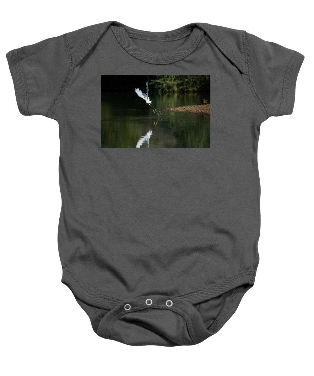 Snowy Baby Onesie featuring the photograph Snowy Egrets 080917-4290-1 by Tam Ryan