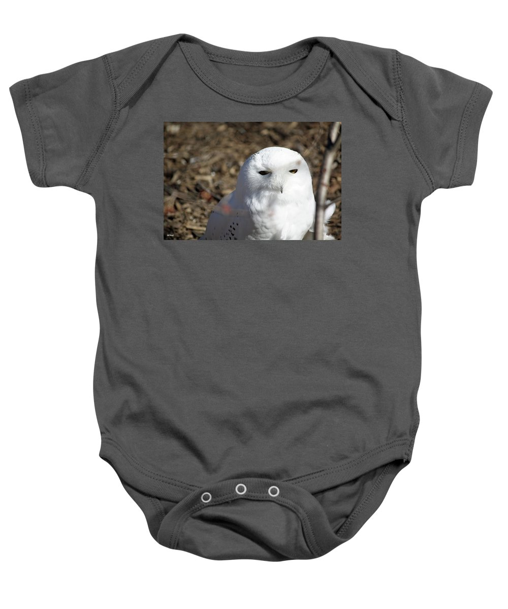 Maryland Baby Onesie featuring the photograph Snowy Owl by Ronald Reid