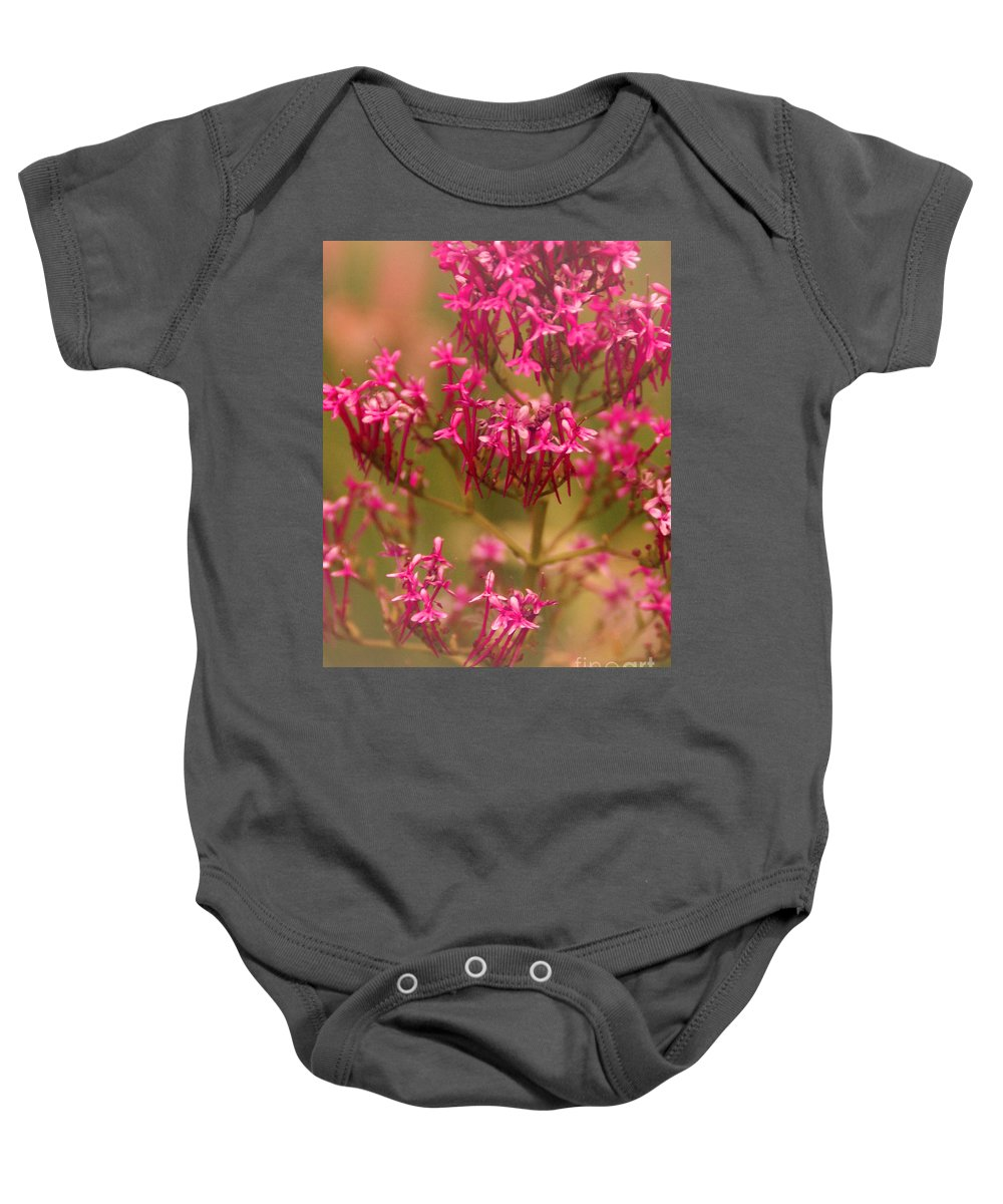 Flower Baby Onesie featuring the photograph Soft Pirouette by Linda Shafer