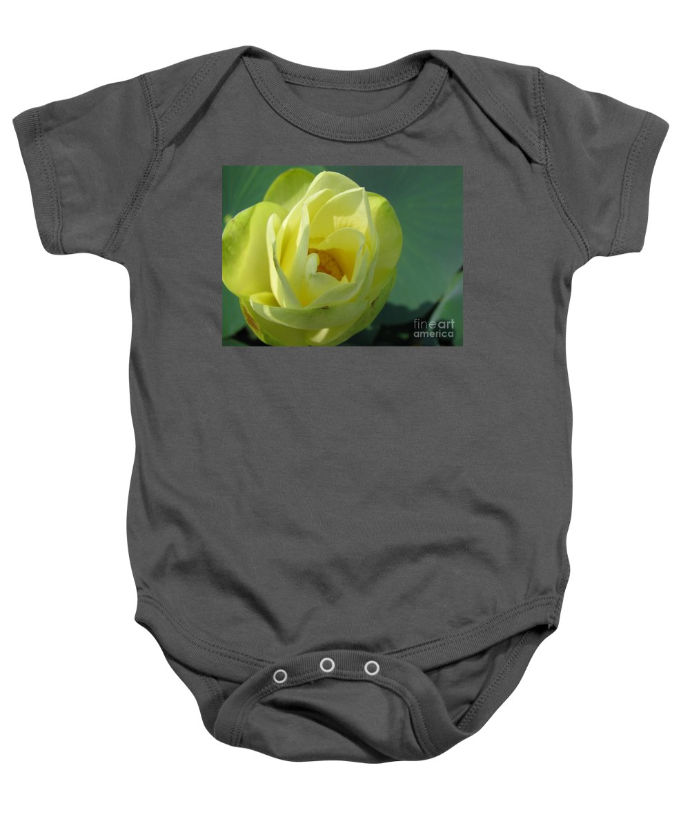 Lotus Baby Onesie featuring the photograph Softly by Amanda Barcon