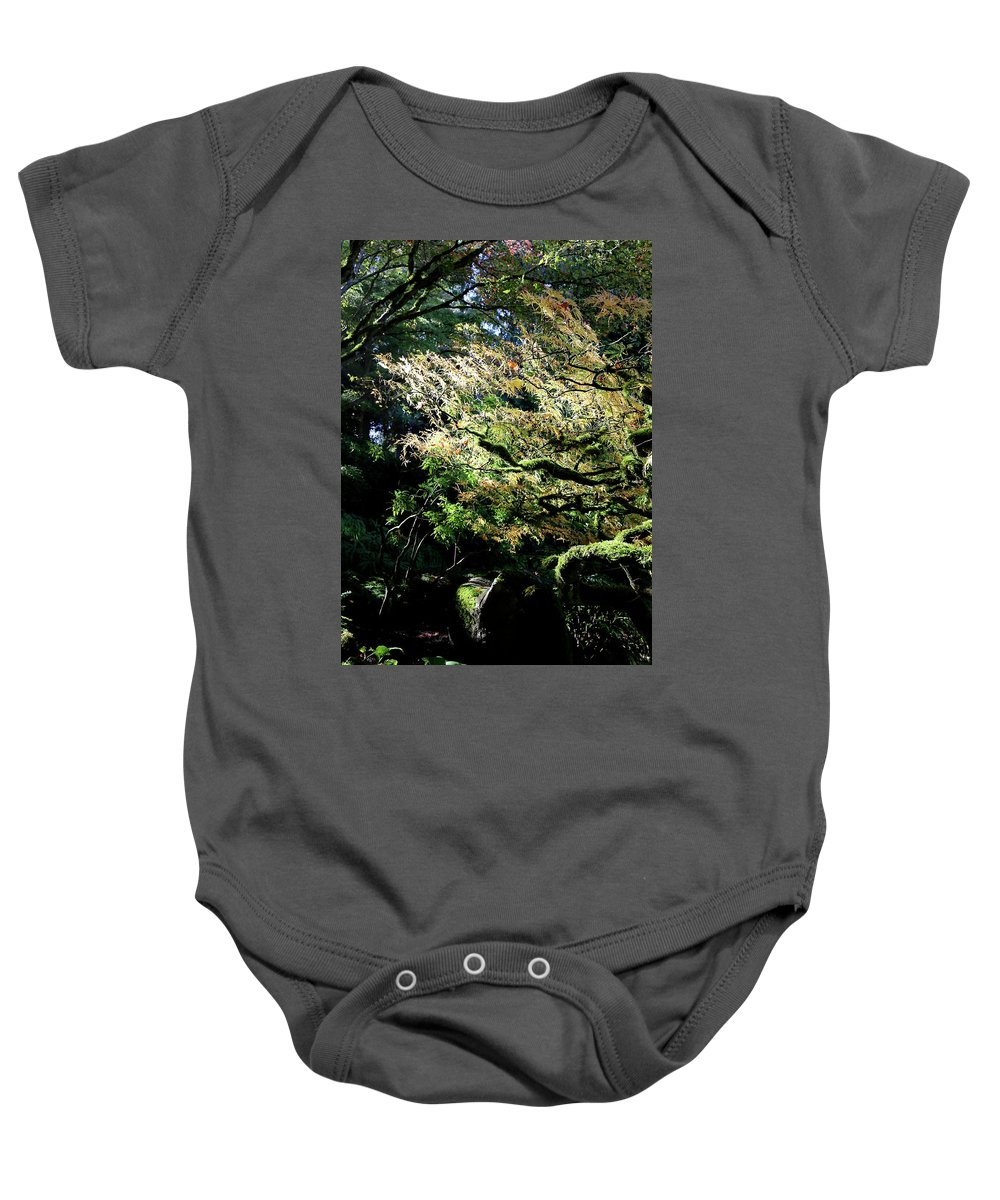 Outdoor Baby Onesie featuring the photograph Song Of The Light 2. by Andrew Kim