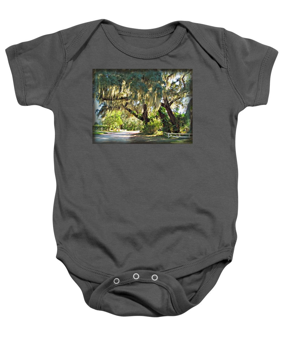 Orlando Baby Onesie featuring the photograph Southern Pathway by Joan Minchak