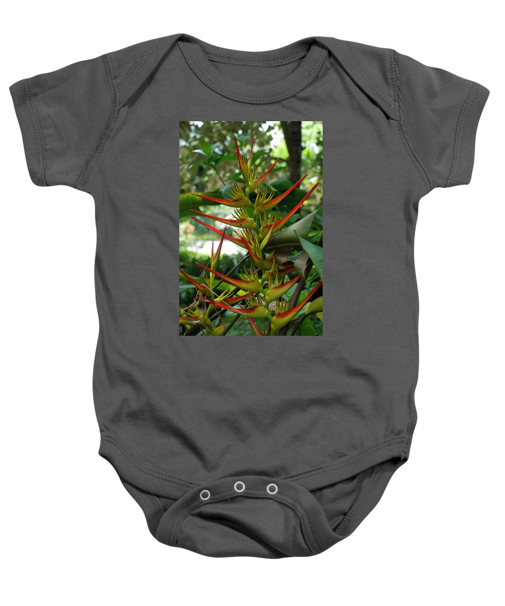 Spike Baby Onesie featuring the photograph Spike Plants by Rob Hans