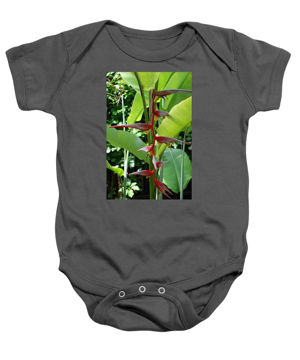 Macro Baby Onesie featuring the photograph Spike Tree by Rob Hans