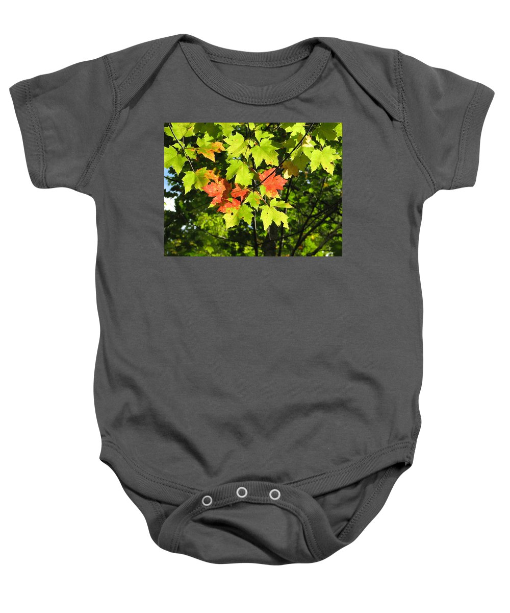 Fall Baby Onesie featuring the photograph Splattered Paint by Kelly Mezzapelle