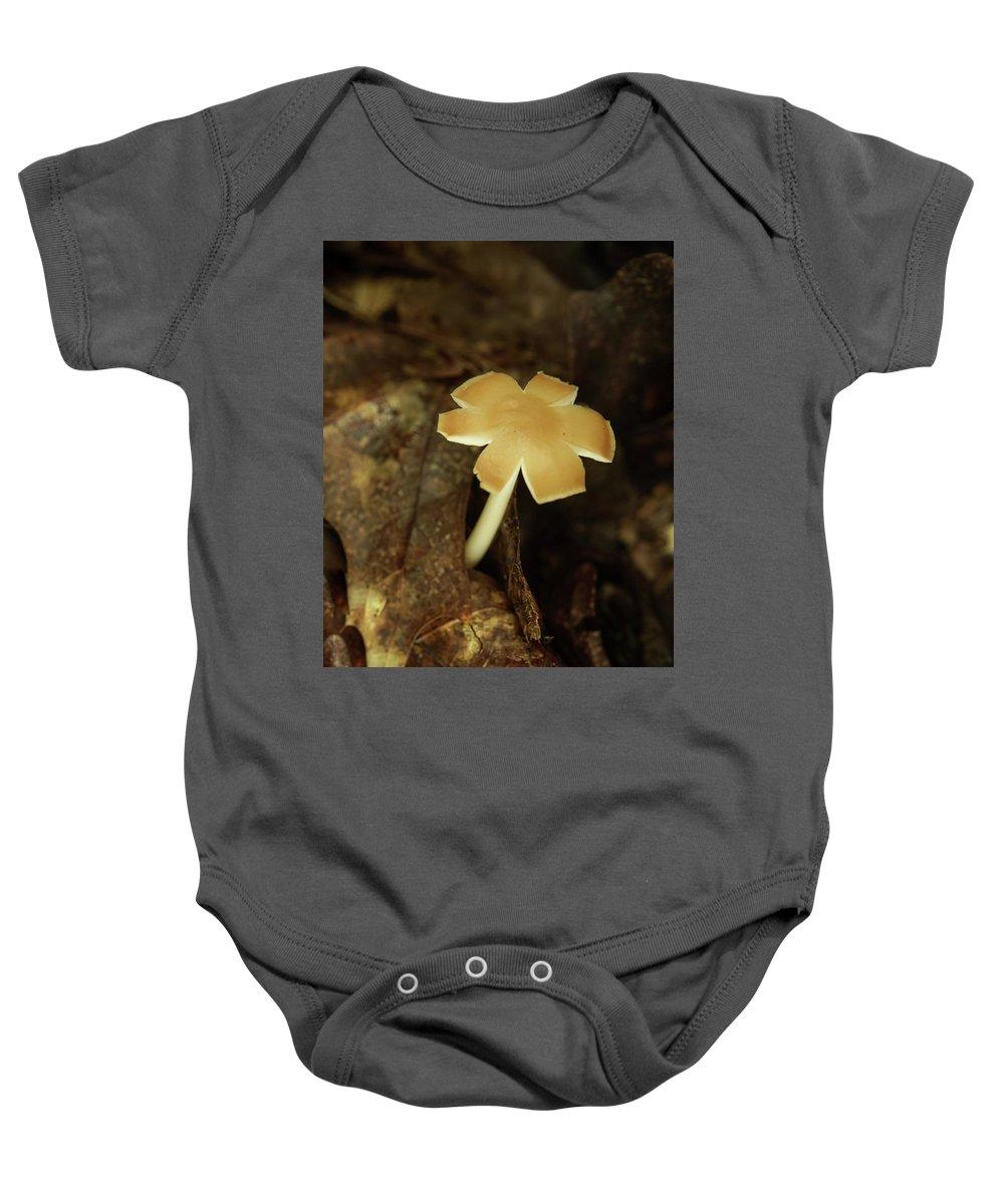 Split Baby Onesie featuring the photograph Split Capped Mushroom by Douglas Barnett