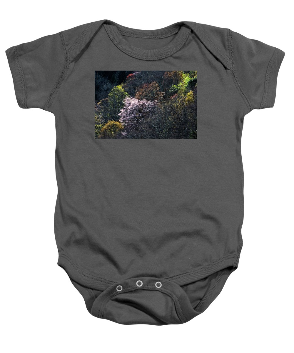 Blue Ride Parkway Baby Onesie featuring the photograph Spring Colors On The Parkway by Barbara Hayton