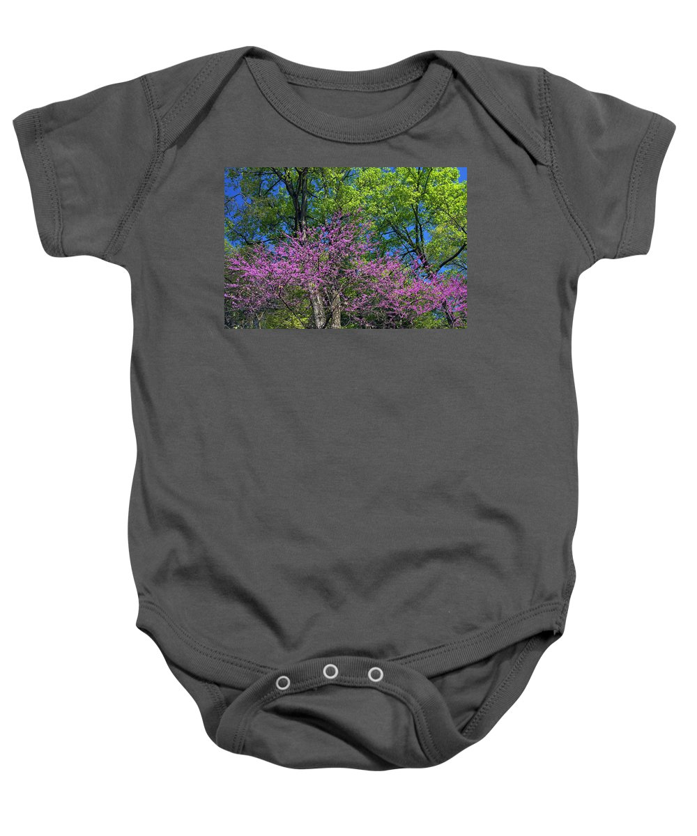 Deciduous Trees Baby Onesie featuring the photograph Spring Colors by Sally Weigand