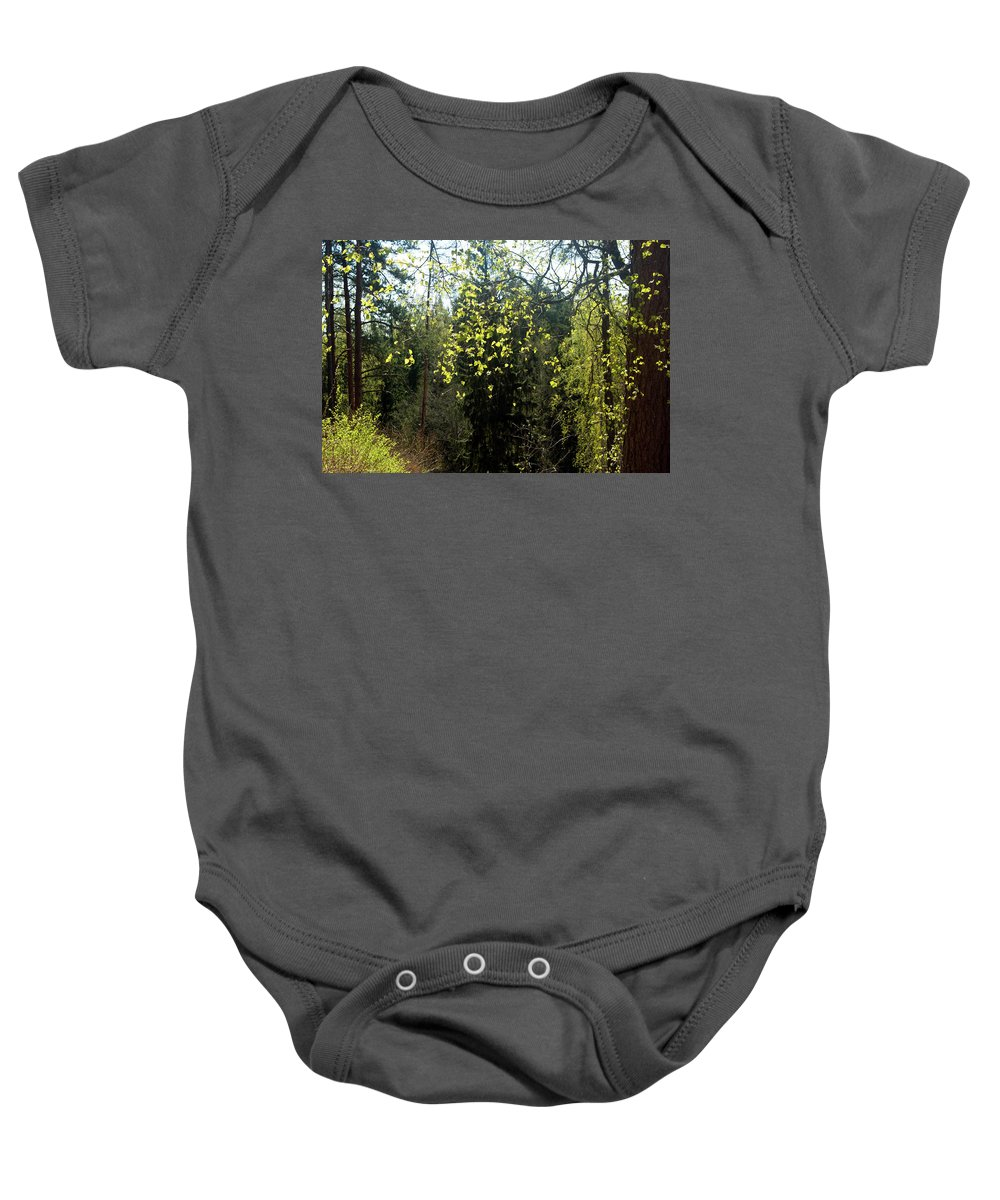 Spring Baby Onesie featuring the photograph Spring Foliage by Jarmo Honkanen