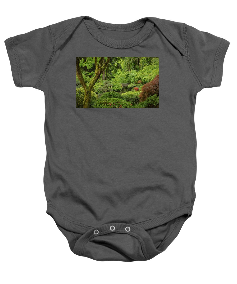 Water Baby Onesie featuring the photograph Spring Morning In The Garden by Don Schwartz