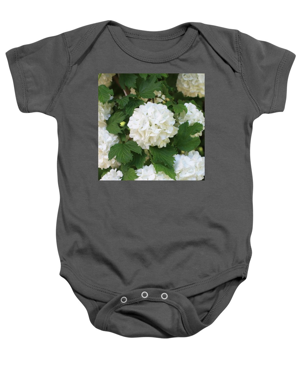 Snowball Baby Onesie featuring the photograph Spring Snowball by Carol Groenen