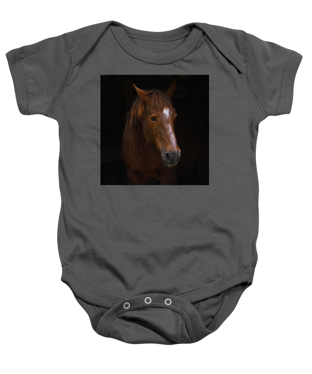 Horse Baby Onesie featuring the photograph Square Horse Portrait by Ludmila SHUMILOVA