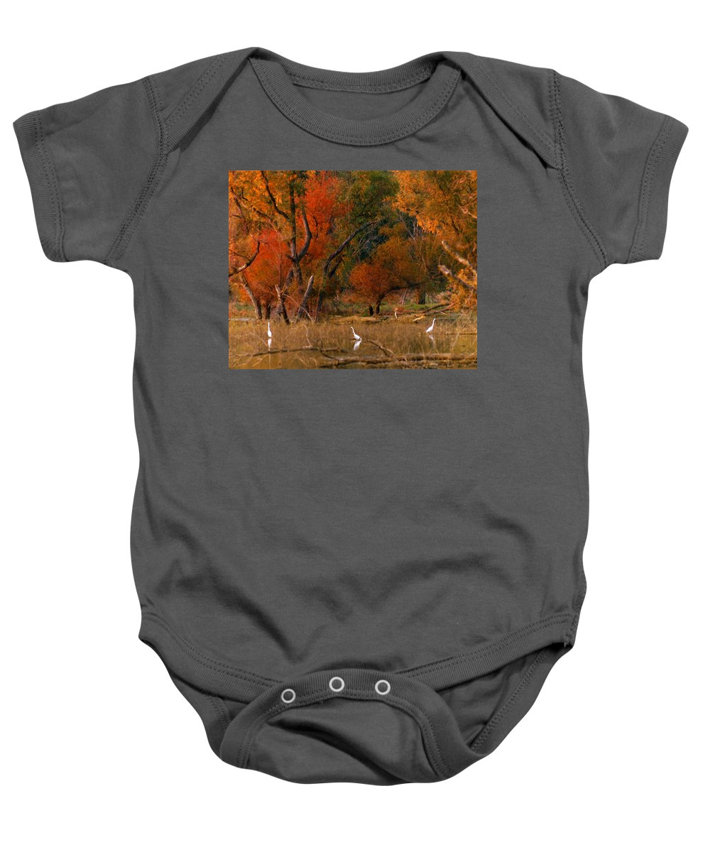Landscape Baby Onesie featuring the photograph Squaw Creek Egrets by Steve Karol