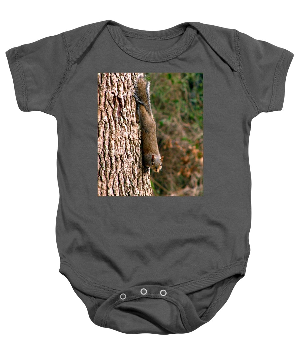 Squirrel Baby Onesie featuring the photograph Squirrel 6 by J M Farris Photography