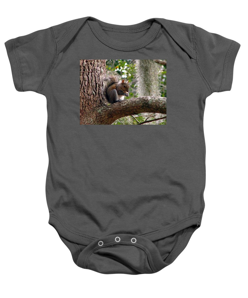 Squirrel Baby Onesie featuring the photograph Squirrel 7 by J M Farris Photography