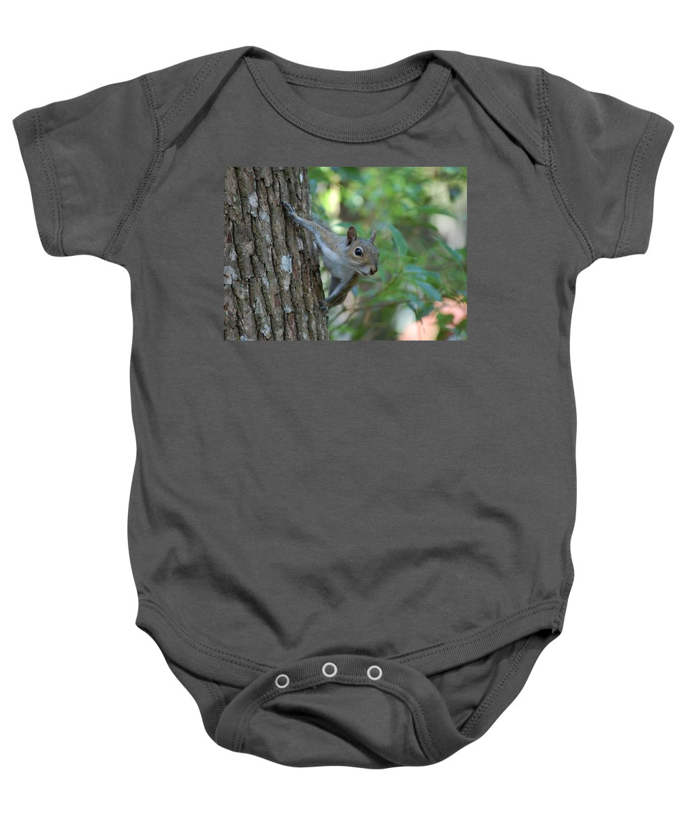 Squirrel Baby Onesie featuring the photograph Squirrel by Robert Meanor