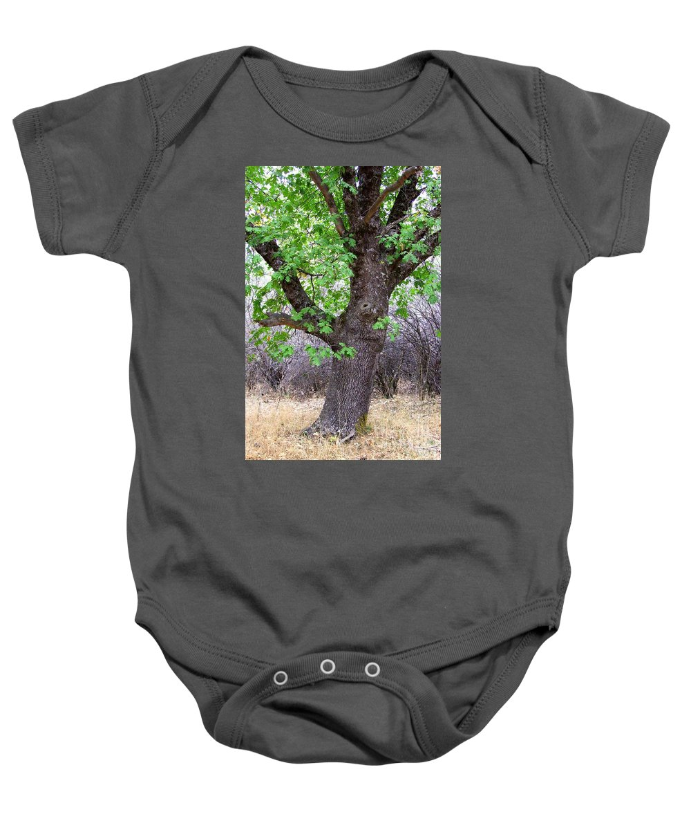 Oak Tree Baby Onesie featuring the photograph Squirrels Live Here by Mary Deal