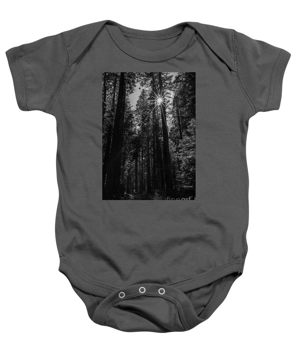 Big Trees Baby Onesie featuring the photograph Star In The Forrest by Sylvia Sanchez