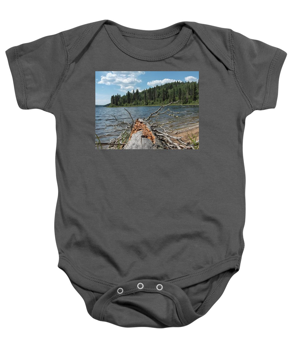 Water Lake Scenery Trees Wood Forest Driftwood Branches Shore Beach Baby Onesie featuring the photograph Steepbanks Lake The Fallen by Andrea Lawrence