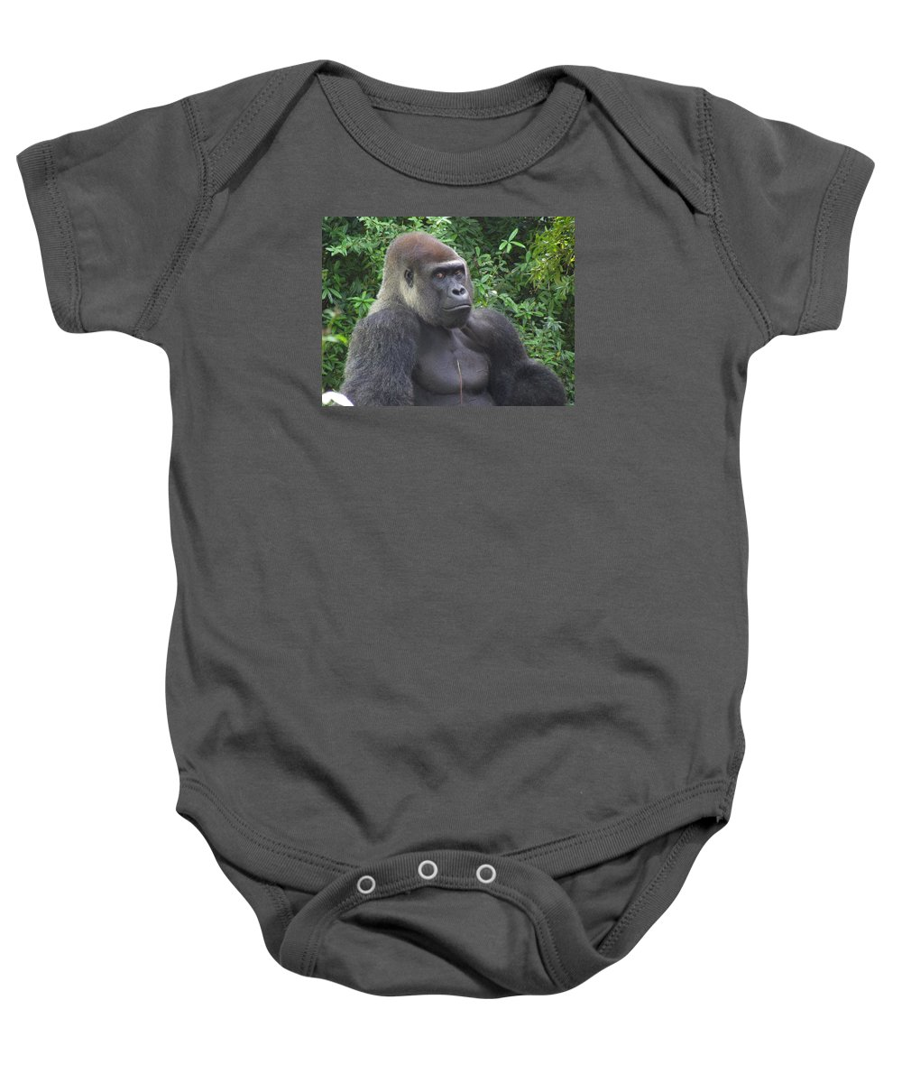 Silverback Gorilla Baby Onesie featuring the photograph Stop Looking At Me by Stuart Rosenthal