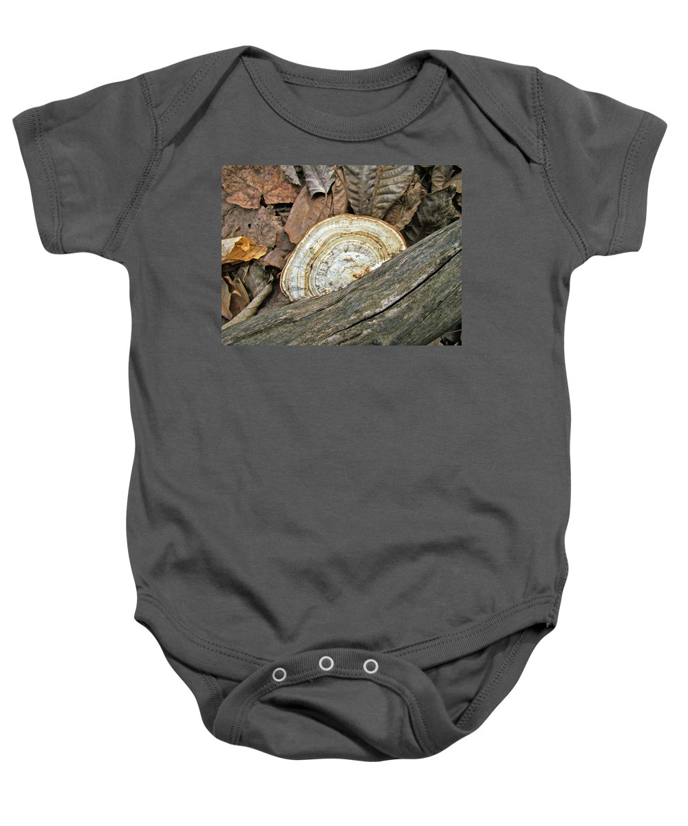 Shelf Baby Onesie featuring the photograph Striped Shelf Fungus - Basidiomycota by Mother Nature