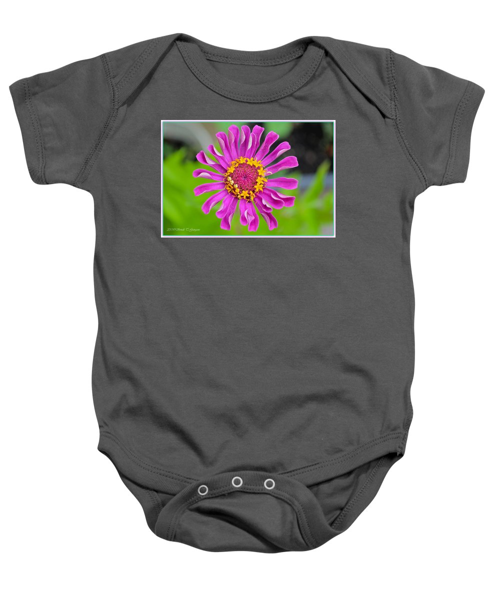 Posters Baby Onesie featuring the photograph Summer Star by Sonali Gangane