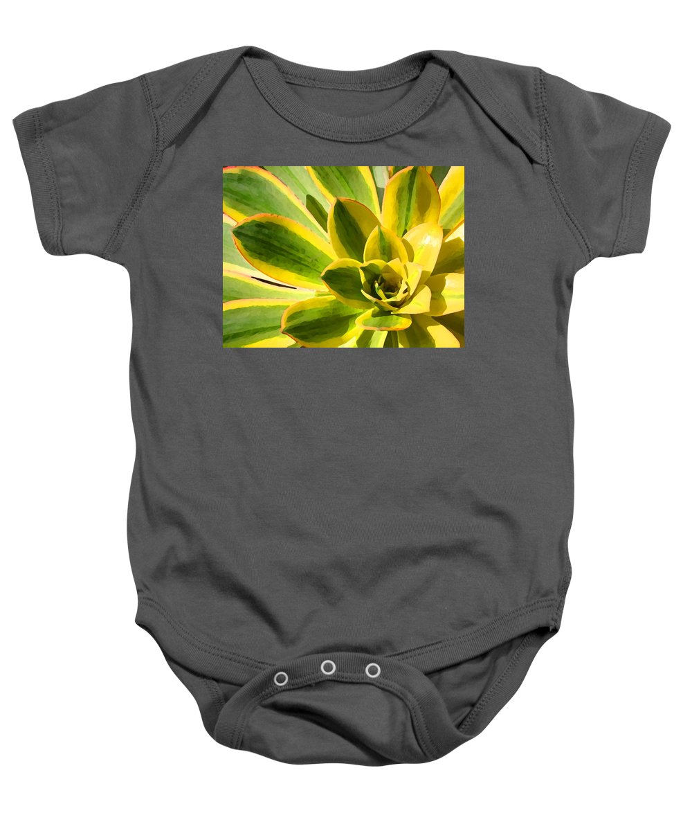 Landscape Baby Onesie featuring the photograph Sunburst Succulent Close-up 2 by Amy Vangsgard