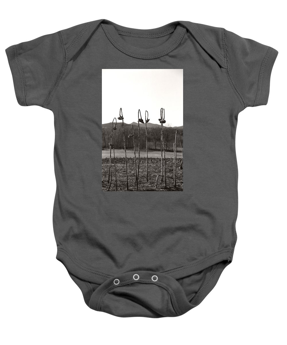 Baby Onesie featuring the photograph Sunflower Swingset by Heather Kirk
