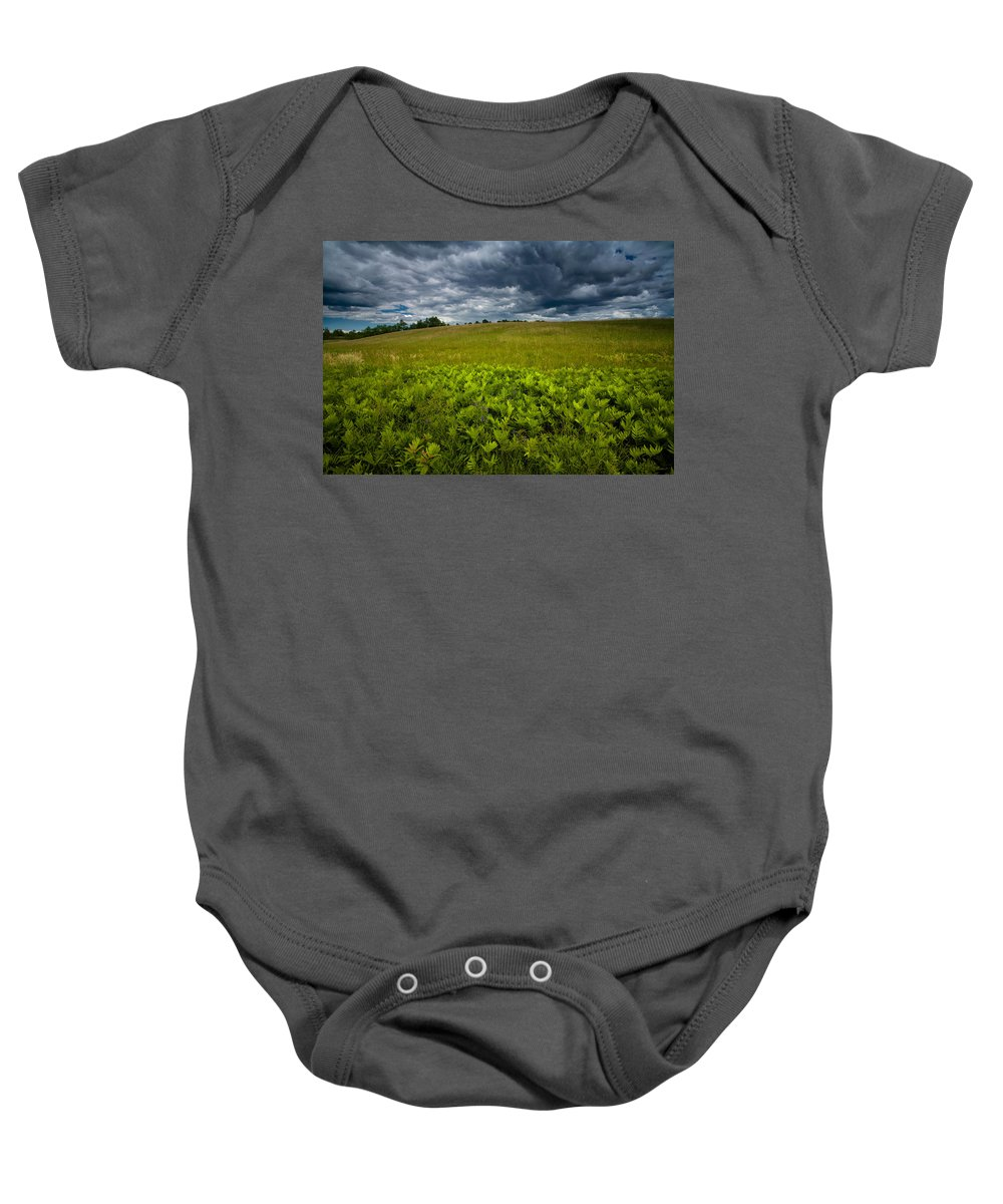 Field Baby Onesie featuring the photograph Sunlit Ferns And Purple Vetch by Irwin Barrett