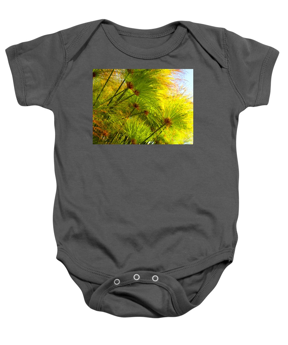 Landscape Baby Onesie featuring the painting Sunlit Paparus by Amy Vangsgard