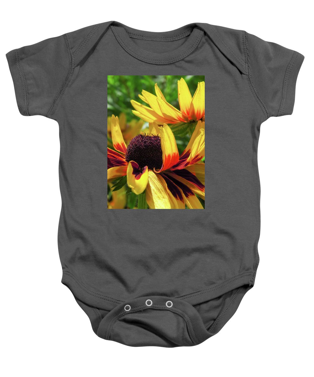 Nature Baby Onesie featuring the photograph Sunlit Susan by WanderBird Photographi