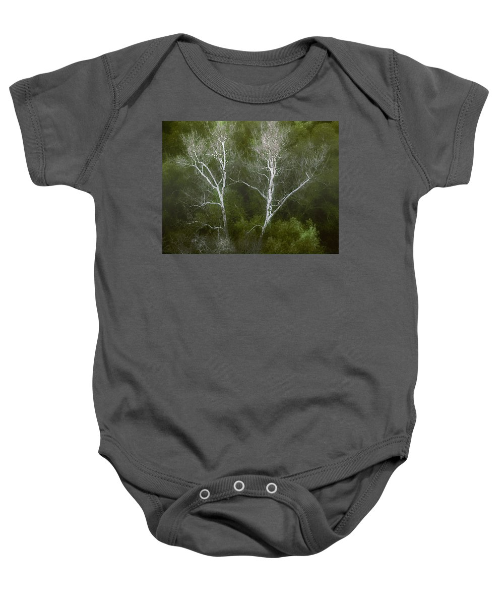Landscape Baby Onesie featuring the photograph Sunol - Twins by Karen W Meyer