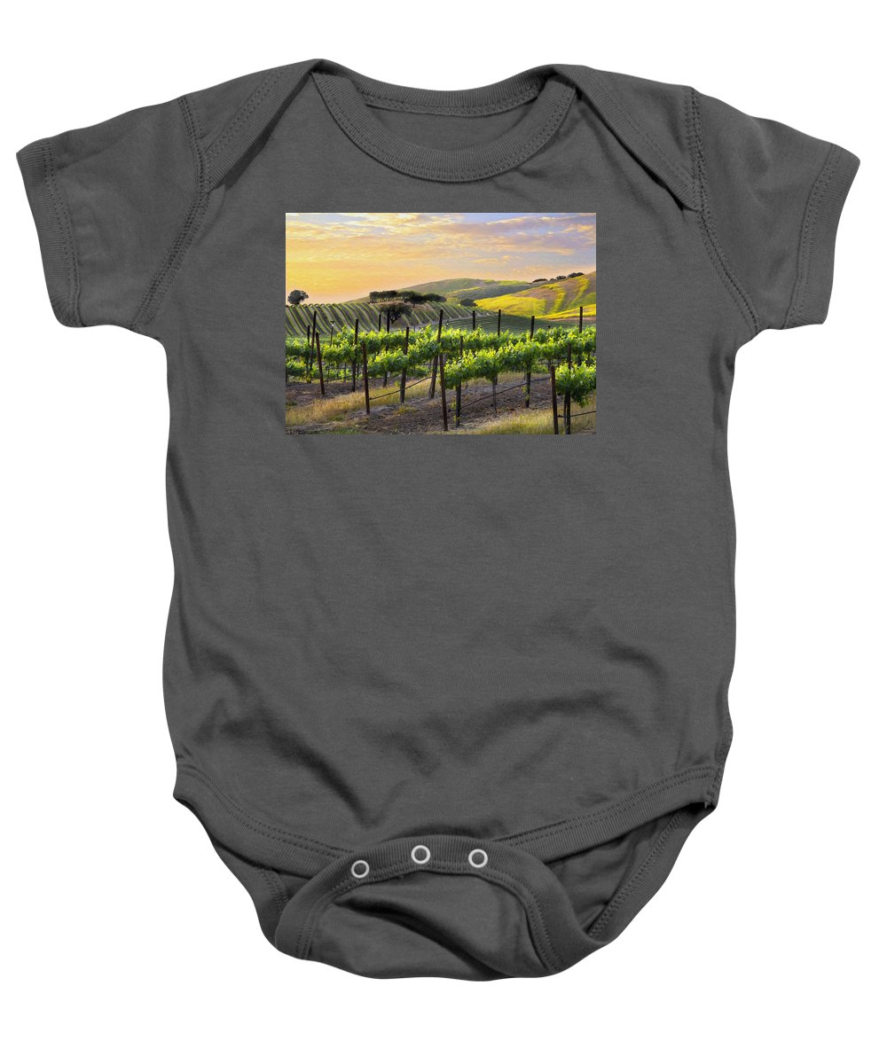 Vineyard Baby Onesie featuring the photograph Sunset Vineyard by Sharon Foster