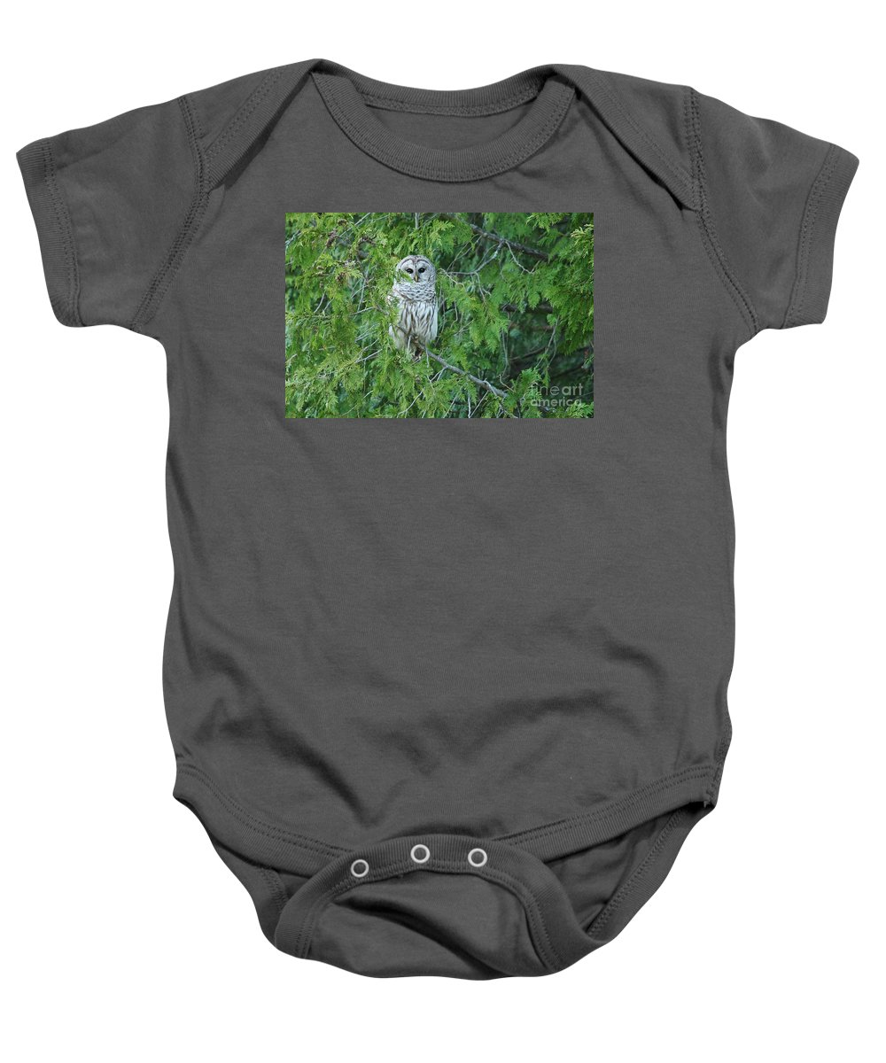 Barred Owl Baby Onesie featuring the photograph Surprise Visitor by Teresa McGill