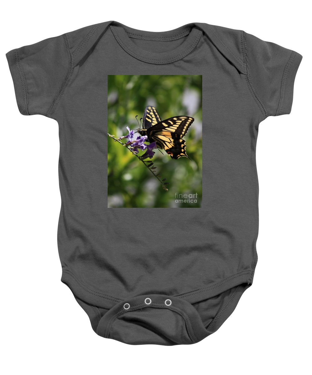Swallowtail Butterfly Baby Onesie featuring the photograph Swallowtail Butterfly 1 by Carol Groenen