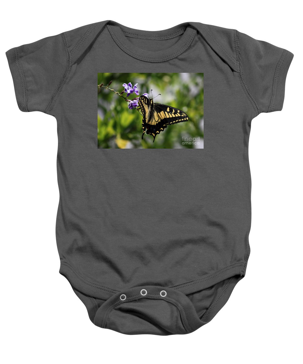 Swallowtail Butterfly Baby Onesie featuring the photograph Swallowtail Butterfly 2 by Carol Groenen